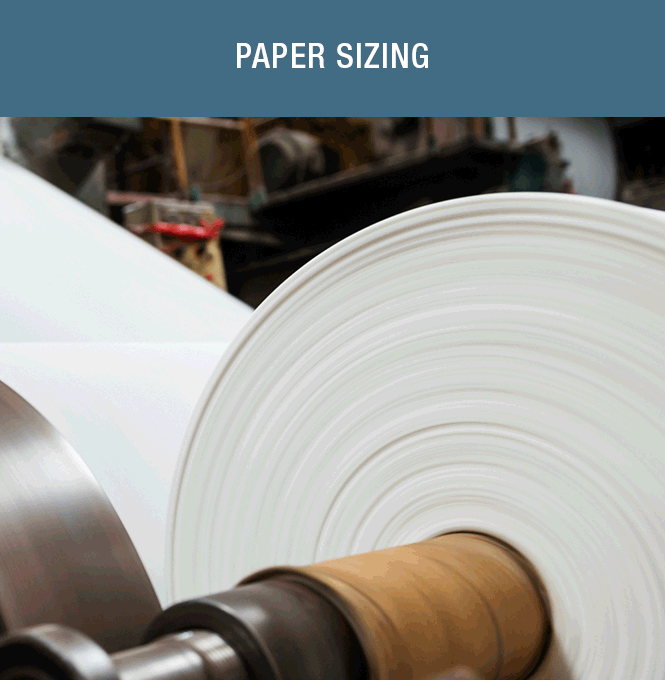 Paper Sizing